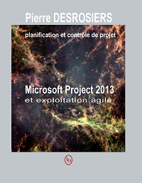 Microsoft Project 2013 exploitation agile